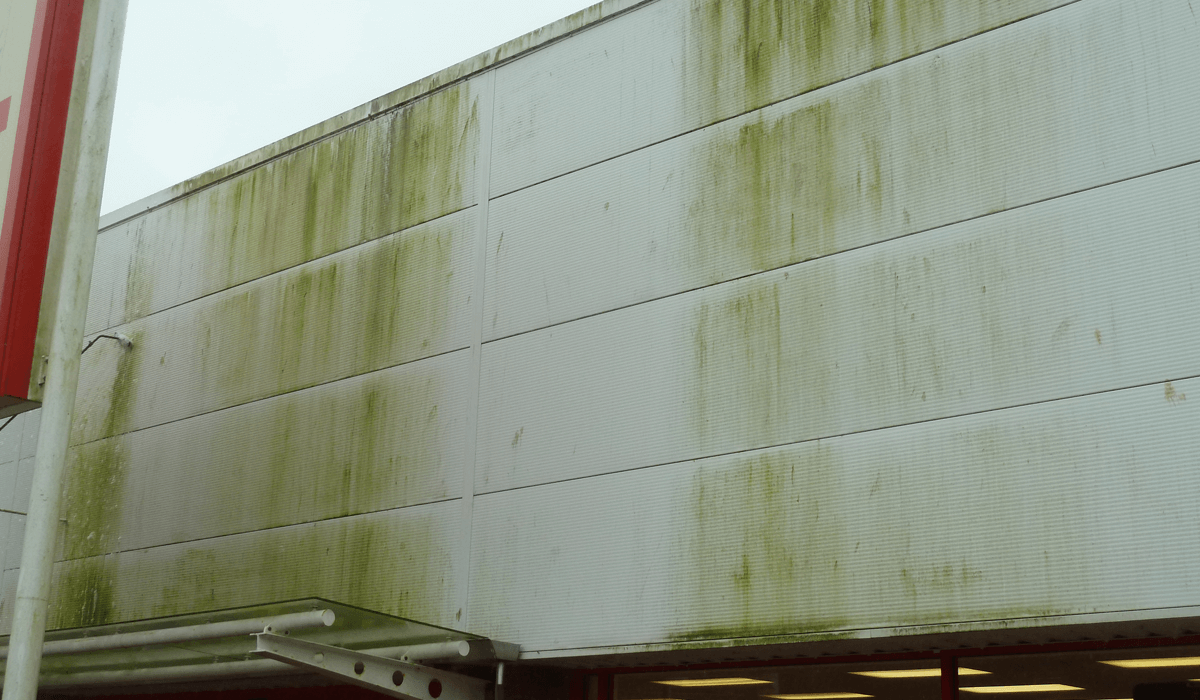 Case Study – Architectural Cladding Suppliers